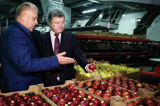 За темпами розвитку в обсязі виробництва валової с/г продукції Тернопільщина посідає 10 місце. За 10 місяців нинішнього року в сільському господарстві в Тернопільській області виробили валової продукції на 2,7% більше, ніж минулоріч, у коштах це 7,3 млрд. грн.