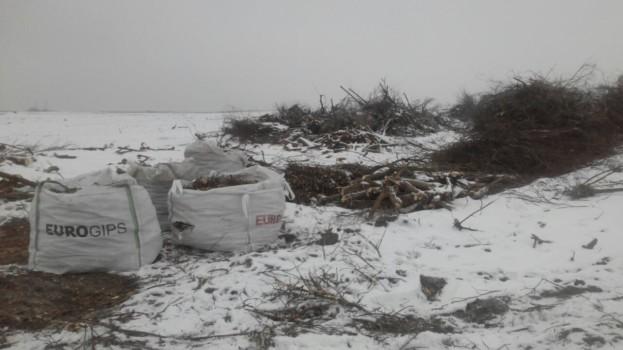 Значну частину сухостою на вулиці Микулинецькій уже видалено